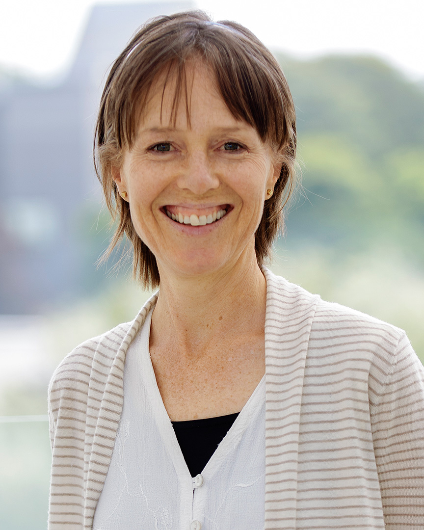 Dr Anne Drummond, UCD School of Public Health, Physiotherapy & Population Science, Director of UCD Centre for Safety and Health at Work